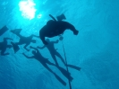 freediving-school018