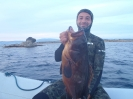 spearfishing0016