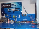 spearfishing-shop016