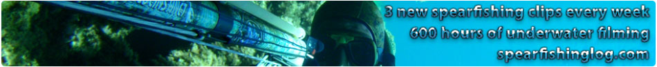 spearfishing-banner